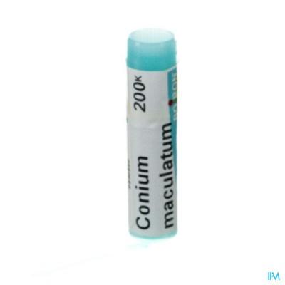Conium Maculatum 200k Gl Boiron